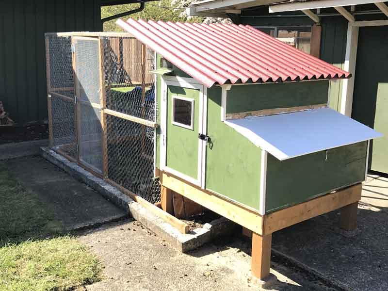 9 Benefits Of Building A Backyard Chicken Coop Diy Coop Builder